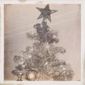 bw xmas tree