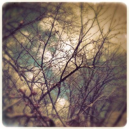 Dreamy sky...