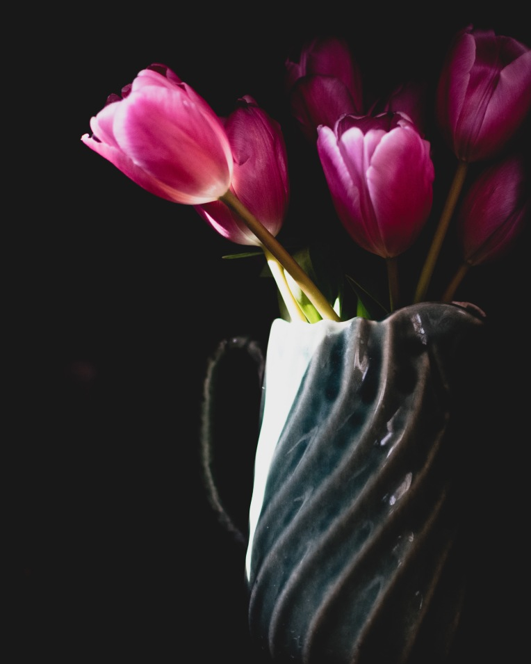 gfancy_tulips_dark-light_kkbronzeplus