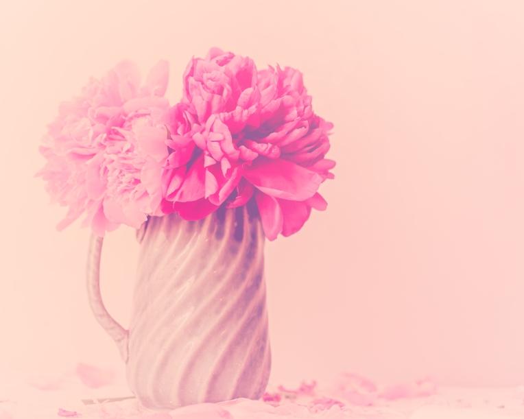 btl_peonies_green.jug_pink.tint2