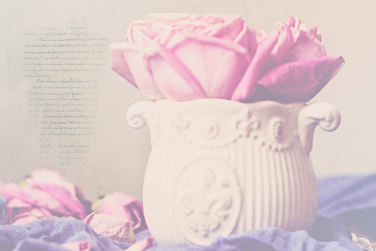 btl_pink.roses.whitepot_fr.script_dusty.blues