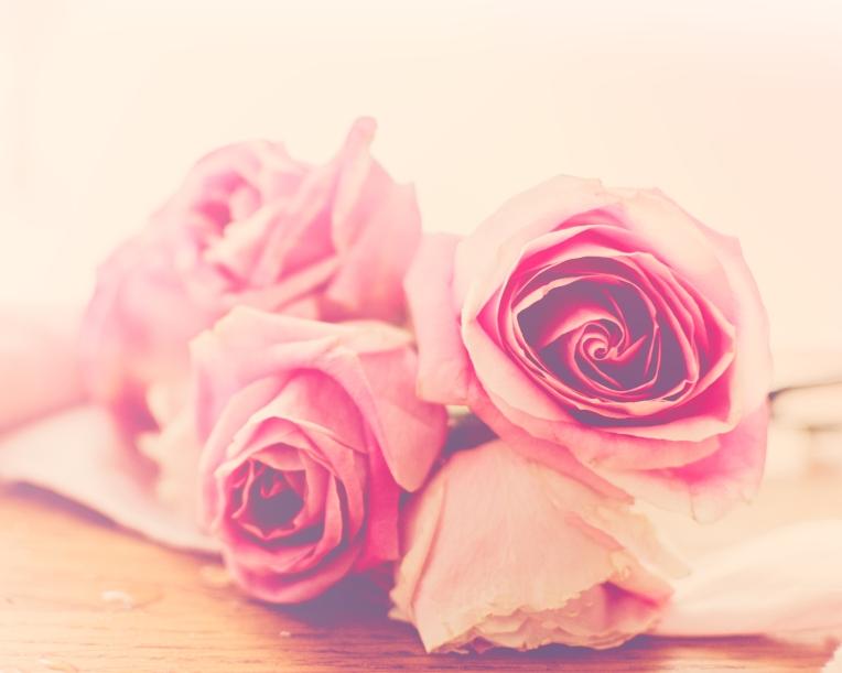 btl_pink.roses_rosie