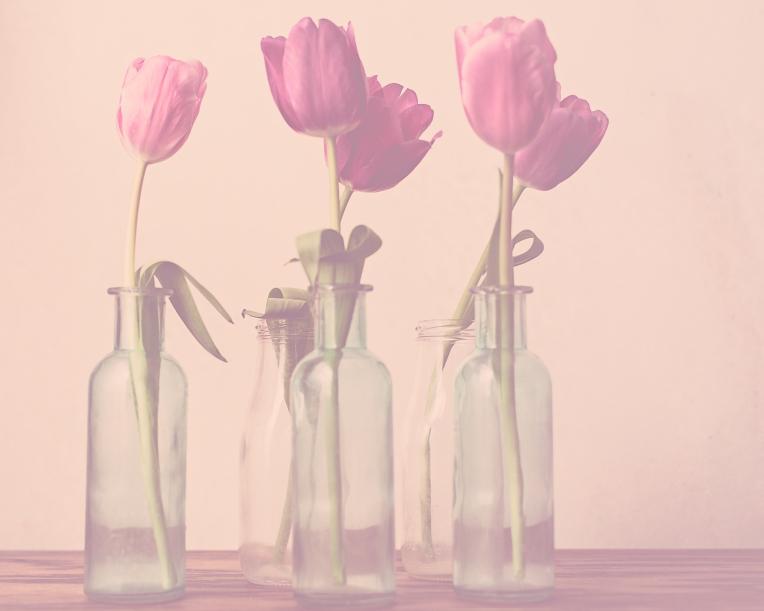 btl_pink.tulips.bottles