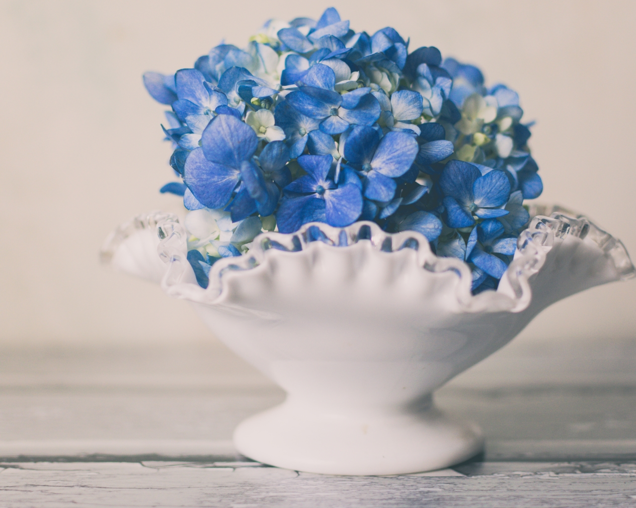gfancy_hydrangea.milk.glass_fairy1